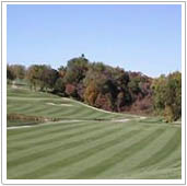 castle shannon golf course in cadiz ohio